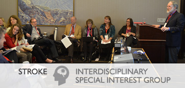 Stroke Interdisciplinary Special Interest Group